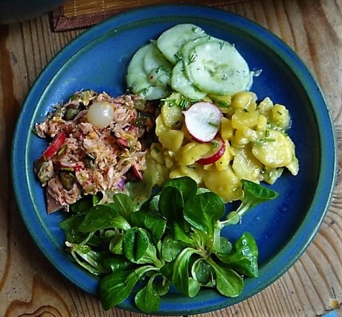 Kartoffel-Thunfisch-Feld- Gurkensalat (1)