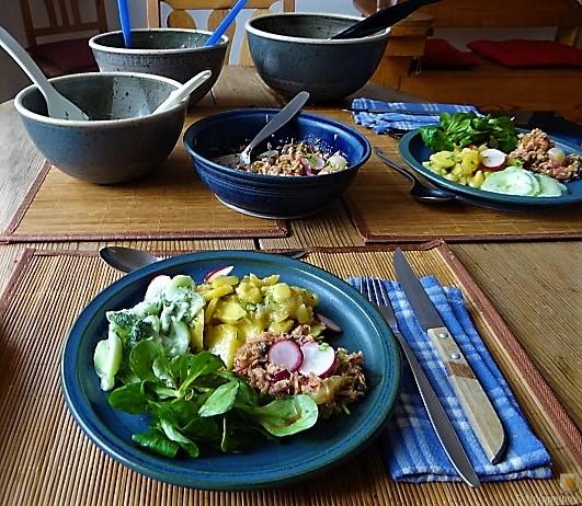 Kartoffel-Thunfisch-Feld- Gurkensalat (12)