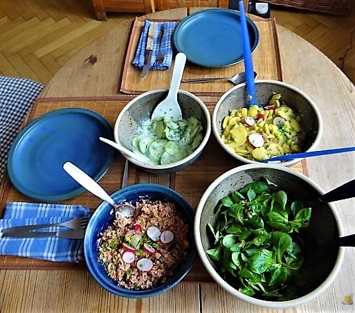 Kartoffel-Thunfisch-Feld- Gurkensalat (13)