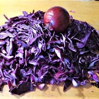 Tassenei und Rotkohlsalat (11)