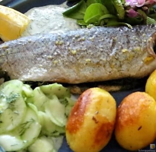Forelle, Salate und Dip (24)