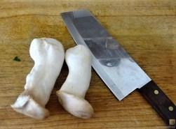 Kartoffel-Bärlauch-Gurkensalat, Kräuterseitlinge (17)