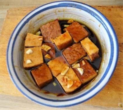 Patinakenstanpf,geräucherter Tofu (15)