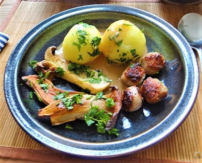 Kleine Klöse, Kleine Fleischbällchen,Pilze, Sauce (3)