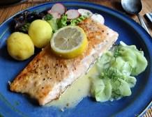 Lachs und Salate (26)