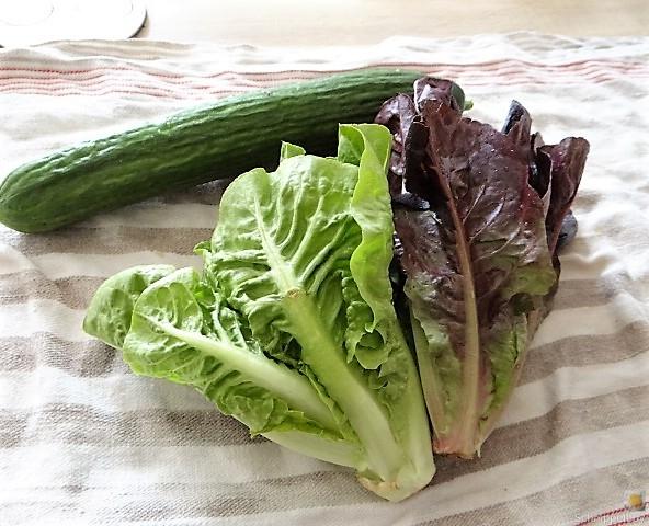 Lachs und Salate (7)