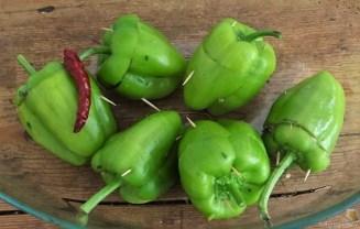 Paprika,grün,gefüllt (15)
