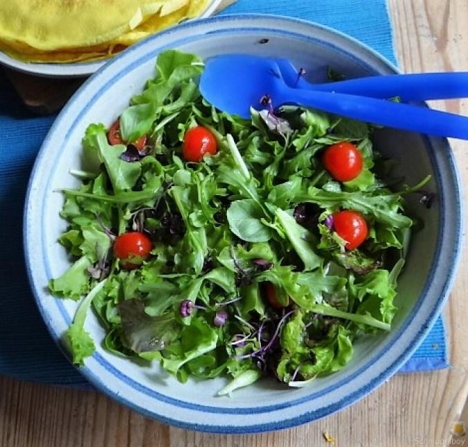 Eierpfannkuchen mit Pilz-Gemüse Füllung und Pflücksalat (26)