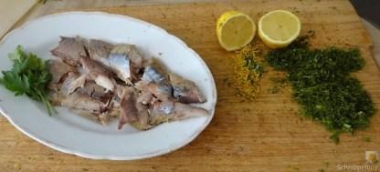 Butermilchsuppe mit geräuchertem Fisch (8)