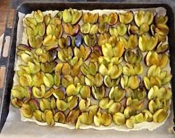 Bohneneintopf und Pflaumenkuchen (18)