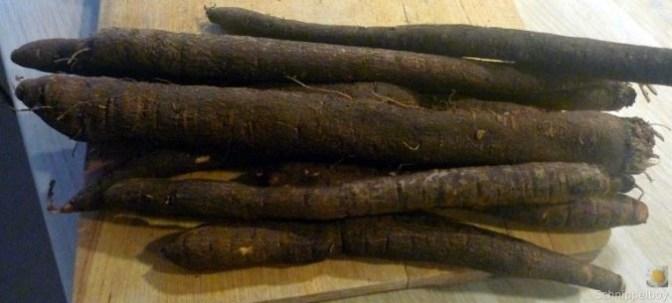 Schwarzwurzel, Ofenkartoffel, Feldsalat (4)