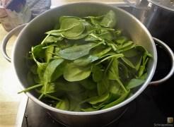 Spinat mit Kürbis und Ei (16)