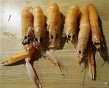 Gemüse, Meeresfrüchte, Nudeln (21)