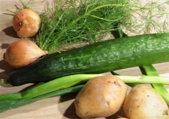 Kartoffelsalat, Gurkensalat und gräucherte Forelle (8)