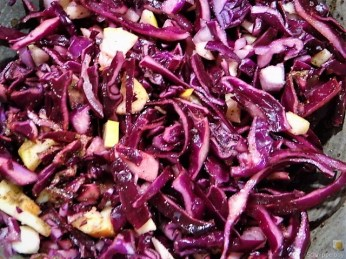 Marinierter Matjes und Rotkohlsalat (14)