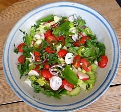Nudeln,Tomaten (12)