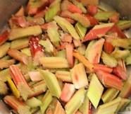Sauerampfersuppe, Salat und Rhabarber Crumble (32)
