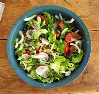 Sauerampfersuppe, Salat und Rhabarber Crumble (8)