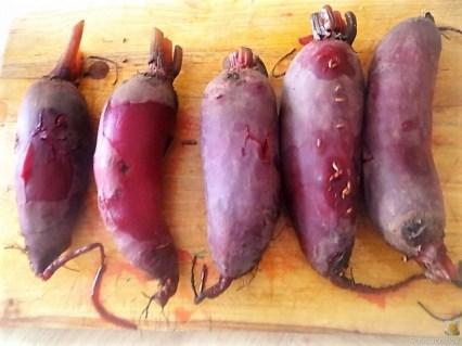 Matjes Tatar, Rote Bete Salat, Radieschensalat, Kartoffeln, (13)