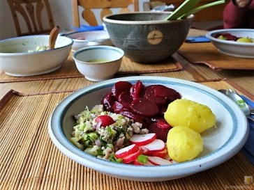Matjes Tatar, Rote Bete Salat, Radieschensalat, Kartoffeln, (18)