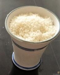 Reisbrei in Kokosmilch mit Apfelkompott-Mus (7)