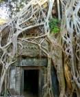 Angkor-3