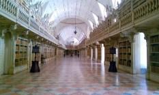 Mafra-library