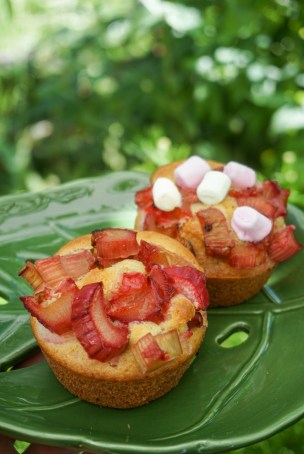 Rhababer Muffins mit Marshmallows