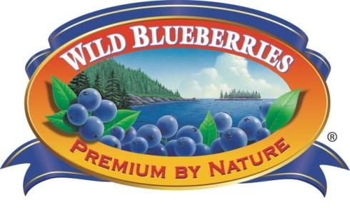 Wilde Blaubeeren aus Kanada
