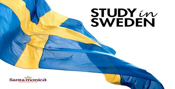 Swedish Institute Study Scholarships