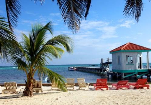 study in jamaica