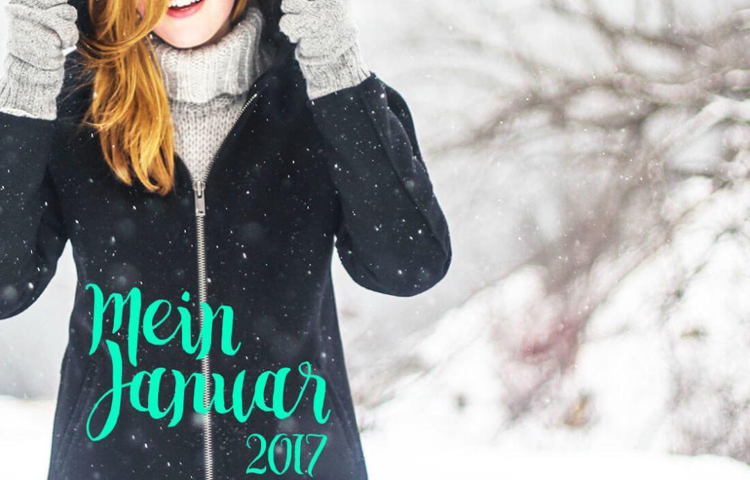 schonhalbelf-januar-2017-buchblog-mein-monat-winter-schnee-gemuetlich-buch-backen-muffins-netflix