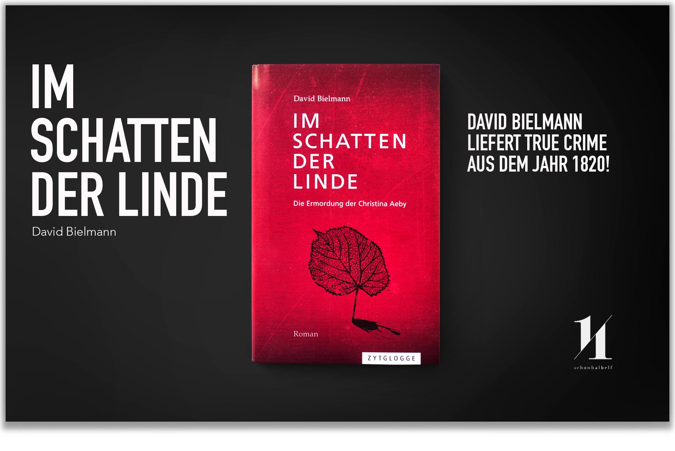 david-bielmann-im-schatten-der-welt-schonhalbelf