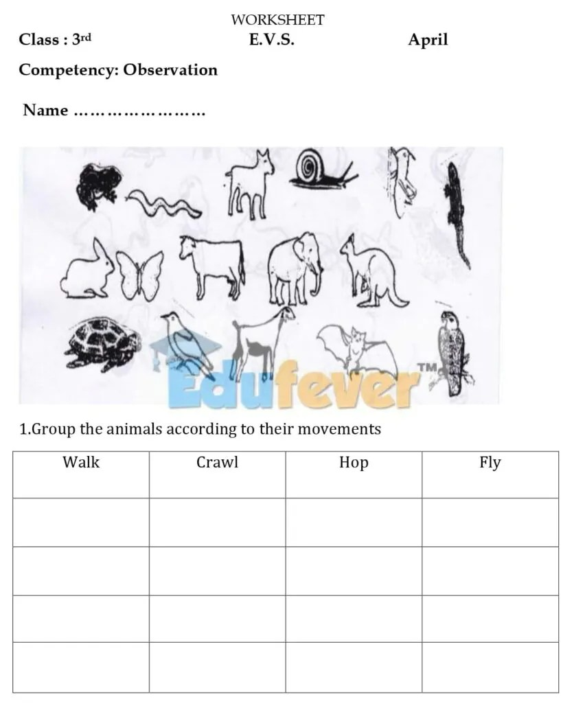 medium resolution of Download CBSE Class 3 EVS Worksheets 2020-21 Session in PDF
