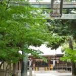 平塚八幡宮と平塚総合公園