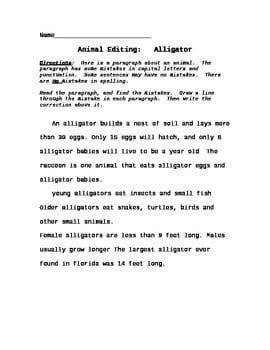 Paragraph Editing Worksheets #3