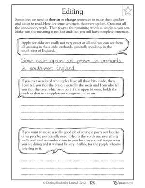 Paragraph Editing Worksheets #5
