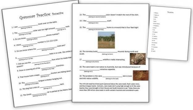 Possessive Nouns Worksheets For 5th Grade #1