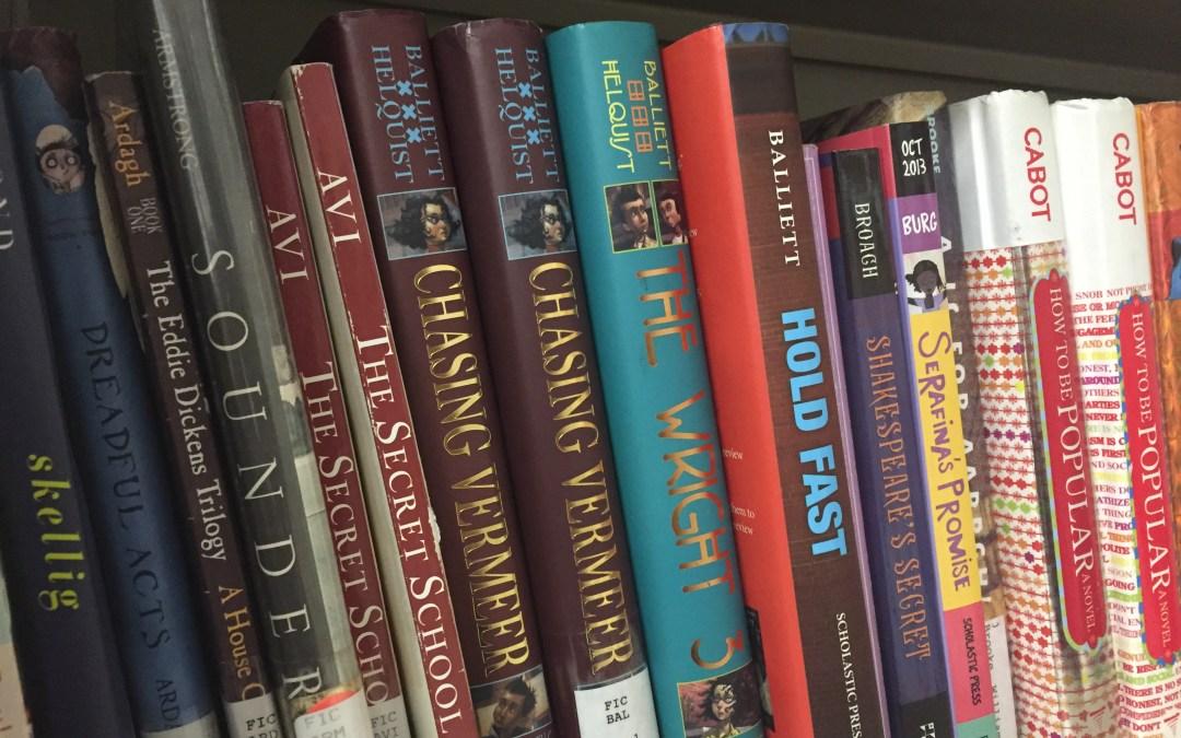 Books on a book shelf.