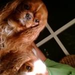 Puck& Stella Selfie