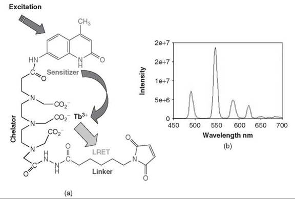 Fluorescent Labeling and Fluorescent Spectroscopy
