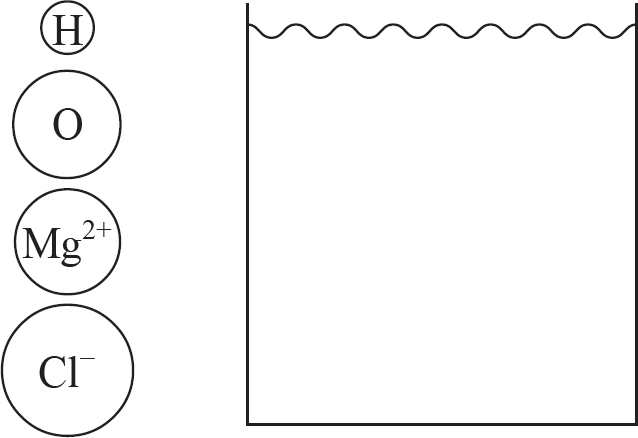 diagram should include at least four water molecules which