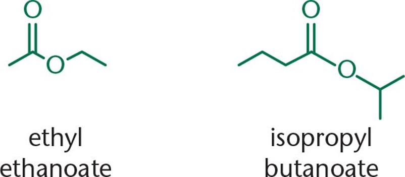 Amides Esters And Anhydrides