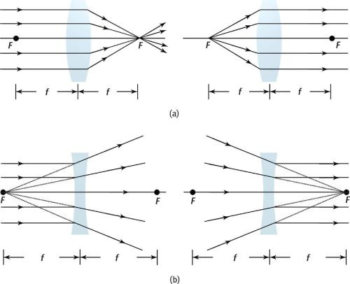 small resolution of ray diagrams for single lenses a convex converging lenses b concave diverging lenses real world