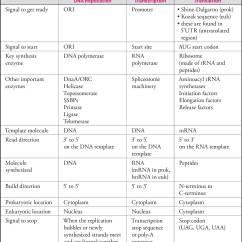 Translation Vs Transcription Venn Diagram Skull Quiz Molecular Biology Mcat And Biochemistry