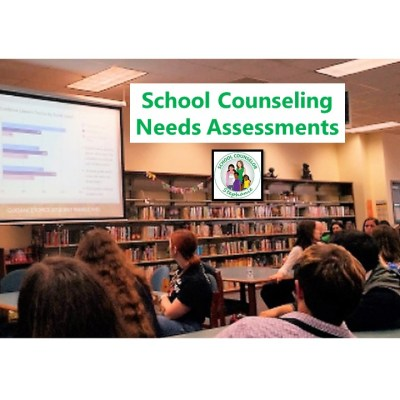 Needs Assessments in School Counseling