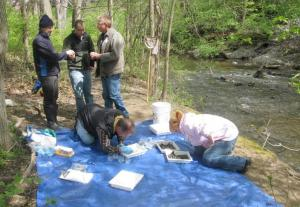 IMAGE FROM PLUS.GOOGLE.COM Members from Friends of the Rouge search for insects for environmental health analysis.