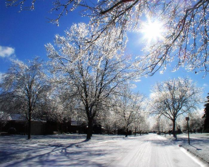 winter-in-michigan_devianart-net