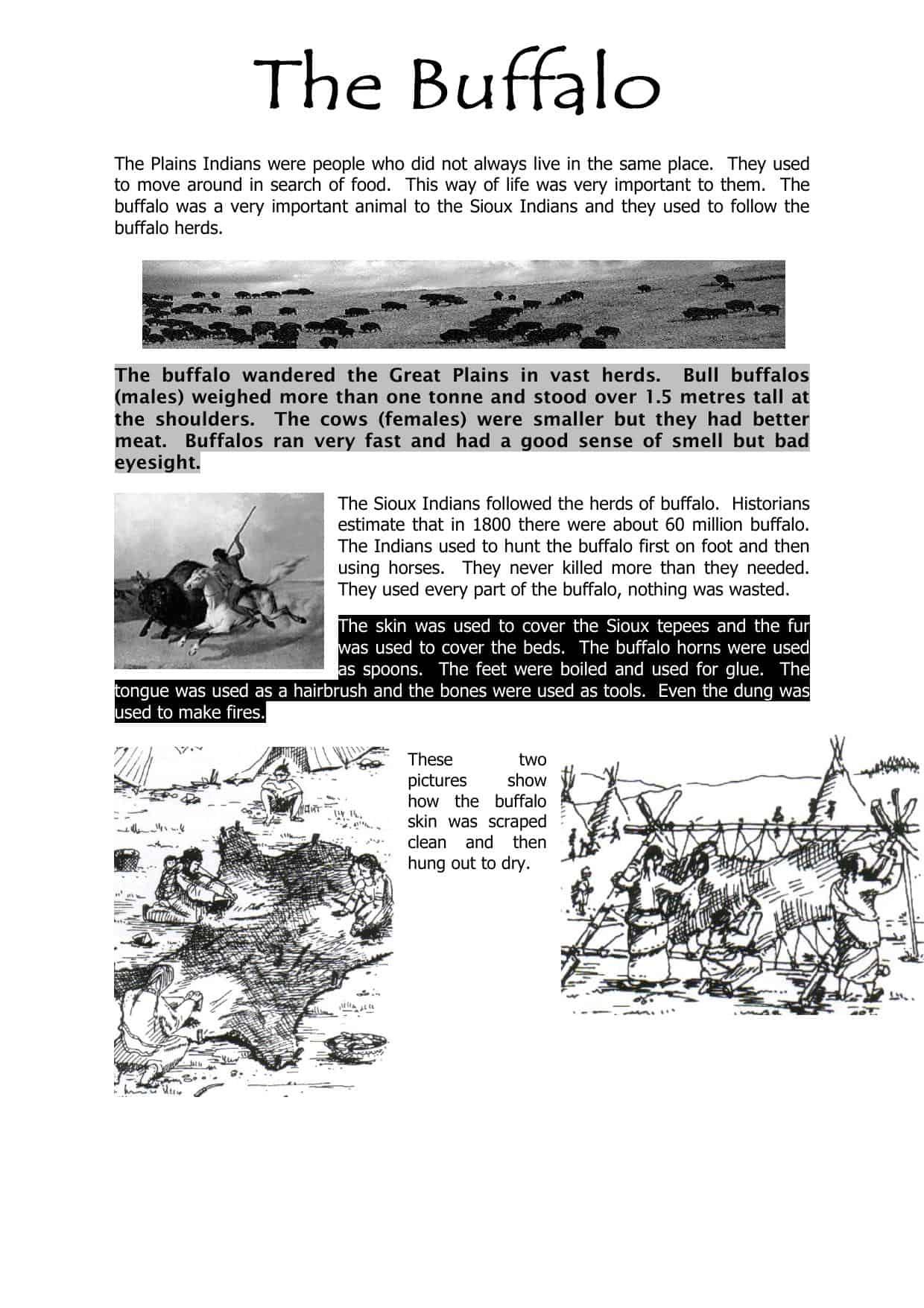 Buffalos Worksheet