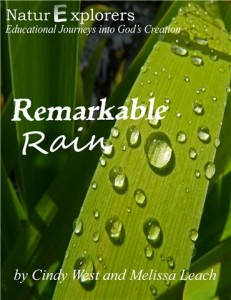 rain cover (2)